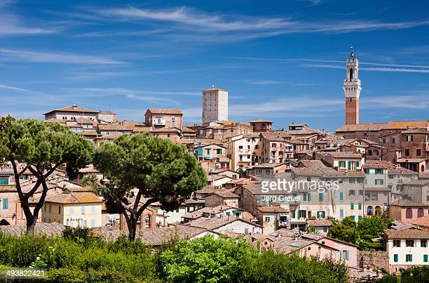 siena - siena italy stock photos and pictures