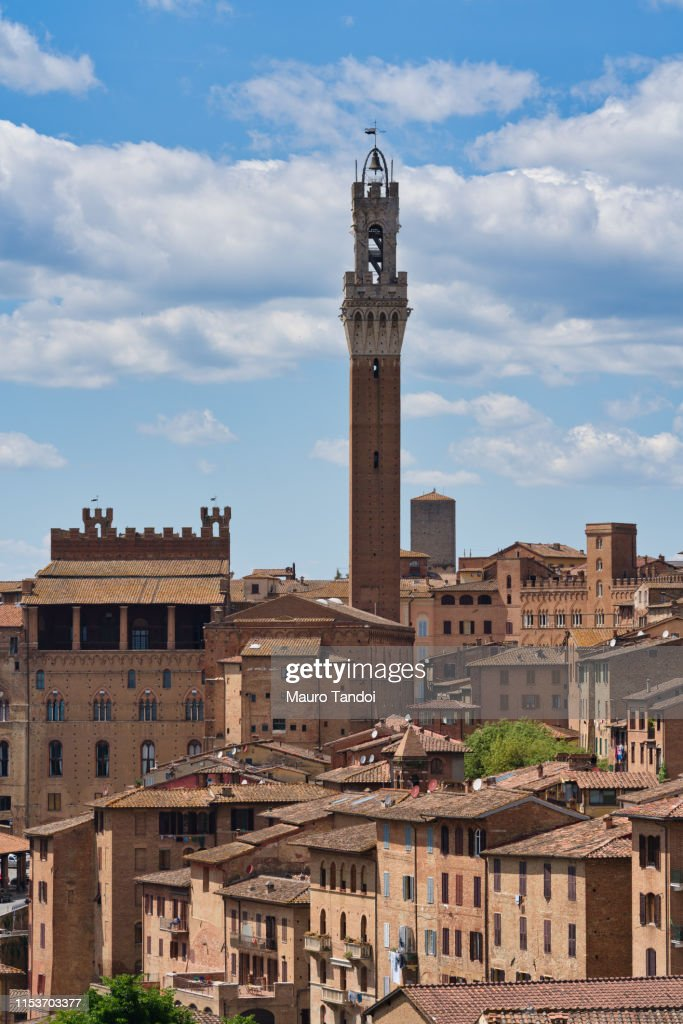 Siena rooftop and its Tower of Mangia (Torre del Mangia), Tuscany : Foto stock