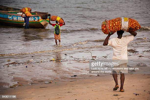 sierra leone, west africa, the beaches of yongoro - tree man syndrome stock photos and pictures