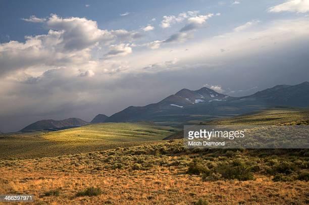 Sierra Nevada foothill landscape