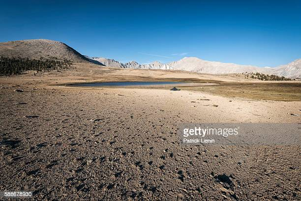sierra nevada mountains, usa - tundra stock pictures, royalty-free photos & images