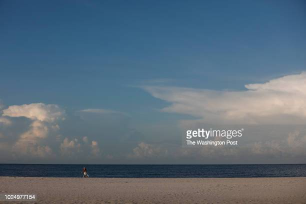 August 26: Siesta Beach visitors walk near the water in the early morning on August 26, 2018 in Siesta Key, Florida. Florida Governor Rick Scott...