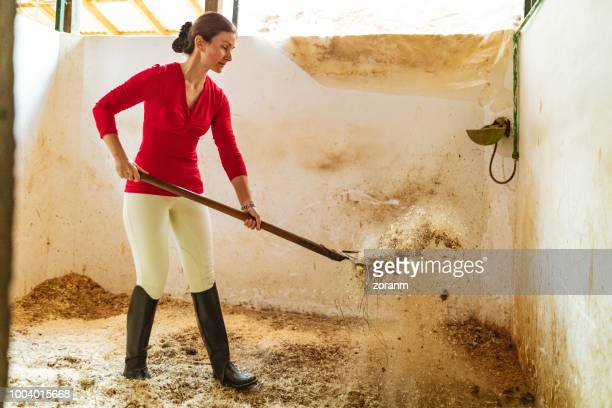 sifting sawdust in stable - riding boot stock pictures, royalty-free photos & images