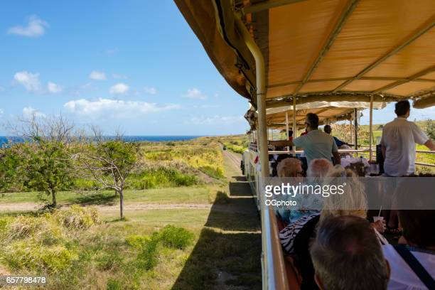 sight seeing train on the island of saint kitts. - ogphoto stock pictures, royalty-free photos & images