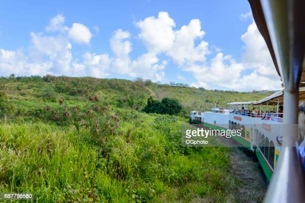 sight seeing train on the island of saint kitts. - st. kitts stock photos and pictures