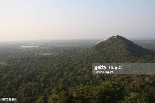 sigiriya - corinne paradis photos et images de collection