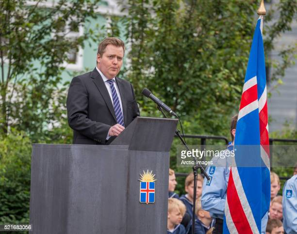 sigmundur david gunnlaugsson, prime minister of iceland, june 17, 2014 - prime minister stock pictures, royalty-free photos & images