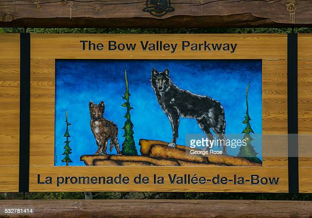 A sign along the Bow River Parkway features two wolves on April 23 2016 in Banff Springs Alberta Canada Banff is Canada's oldest National Park and is...