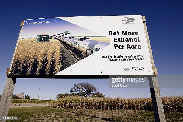 A sign at the edge of a corn field advertises a variety of corn seed developed for ethanol production October 4 2004 near Freeport Illinois Certain...