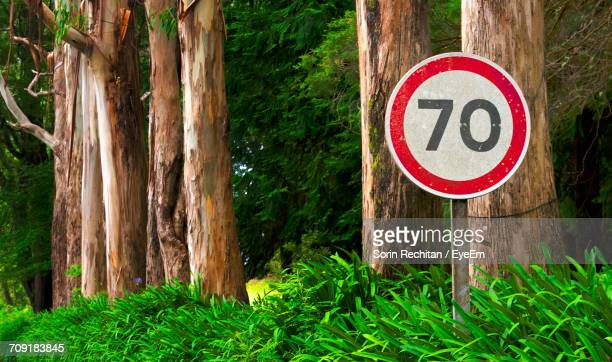 Sign Board With Number 70 Hanging On Tree Trunk