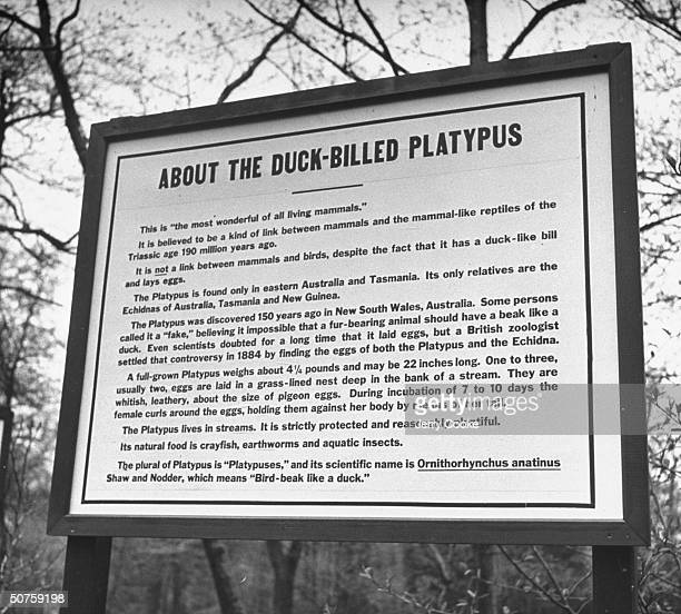 Sign explaining the outlandish trails of the platypus