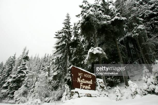 A sign for Mt Hood National forest stands on Highway 35 December 20 2006 near Parkdale Oregon The search for missing climbers Jerry Cooke and Brian...