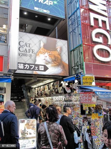 Sign for the Cat Cafe, a popular tourist destination on Takeshita Street, a major shopping district in Harajuku, Shibuya Ward, Tokyo, Japan, October...