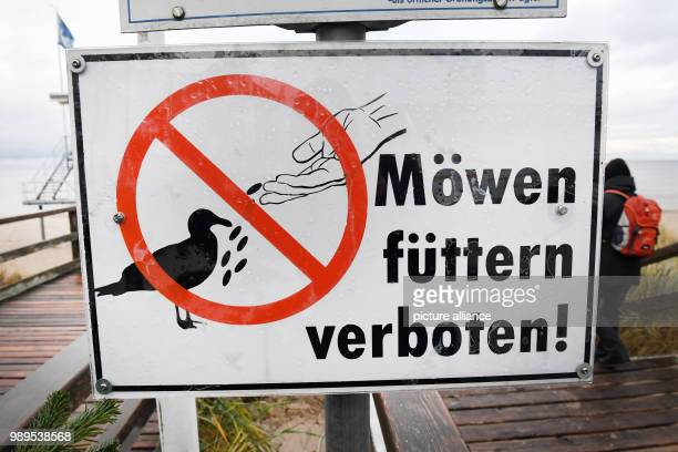 Sign forbidding the feeding of seagulls at the pier in Zinnowitz on the island of Usedom, Germany, 8 December 2017. Photo: Stefan Sauer/dpa