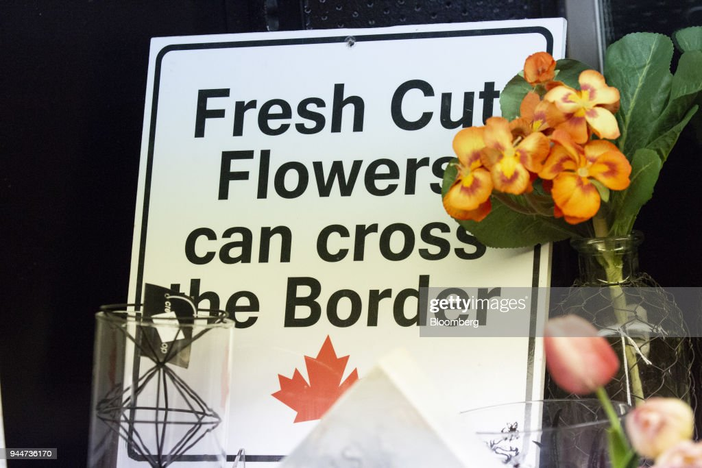 A Sign Informing Visitors That Flowers Can Be Taken Across