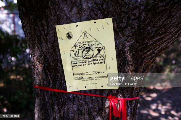 A sign is posted on a tree to describe the damage done to the area after the Clayton Fire tore through Lower Lake California on August 16 2016 A man...