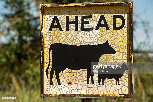 Sign, Livestock Ahead