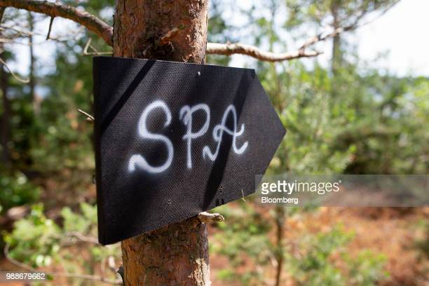 Sign nailed to a tree points to the spa on SuperShe island near Raasepori, Finland, on Wednesday, June 27, 2018. The price of experimental networking...