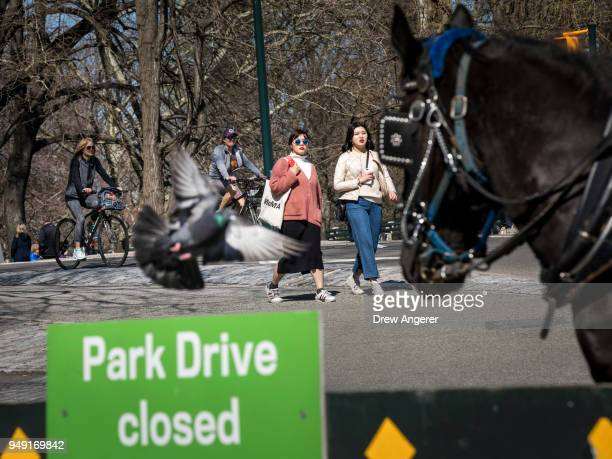 A sign notifying that West Drive is closed to vehicles in the southern portion of Central Park April 20 2018 in New York City New York City Mayor...