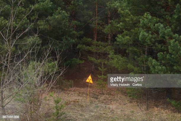 Sign of radioactive danger in front of red forest in the Exclusion Zone Ukraine April 5 2017 The Chernobyl nuclear accident occurred on 26 April 1986...