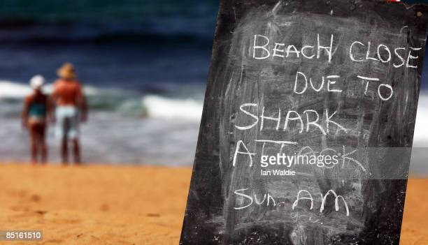 A sign on the closed Avalon Beach is seen after a shark attack on a surfer on March 1 2009 in Sydney Australia The shark attack was the third in as...