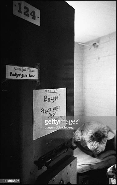 A sign on the door of a cell in Pentonville Prison reads 'Budgie Please watch the door' in reference to an inmate's pet budgerigar London 1967