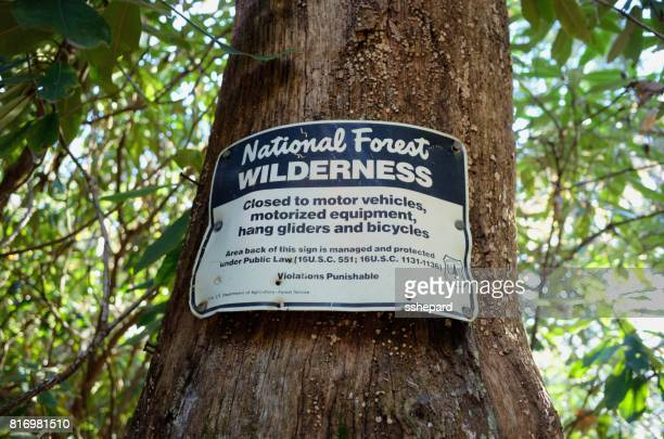 Sign on tree for National Forest Wilderness