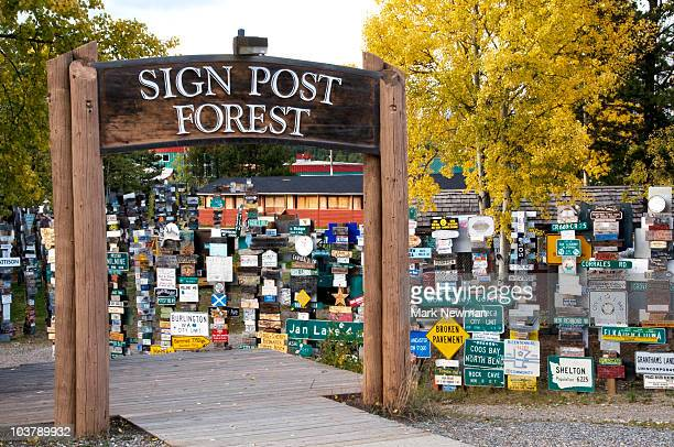Sign post forest.