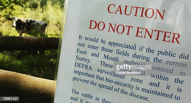 A sign prohibiting access is posted in a surveillance zone set up by the Department for the Environment Food and Rural Affairs at a farm on August 6...