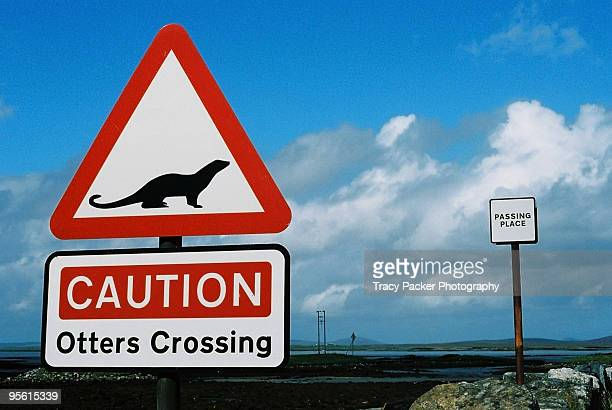 a sign reads 'caution otters crossing'. - animal crossing stock pictures, royalty-free photos & images