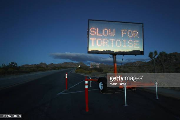 Sign reads 'Slow For Tortoise' in Joshua Tree National Park one day after the park reopened after being closed for two months due to the coronavirus...