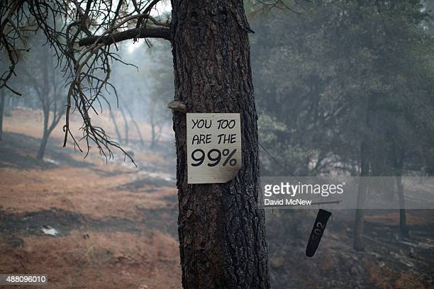 A sign supporting the 99 percent movement stands charred on a tree at the Butte Fire on September 13 2015 near san Andreas California California...