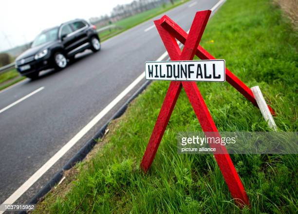 A sign warns drivers of the site of an accident caused by a game animal crossing the road in Wolsdorf Germany 12 April 2017 Photo HaukeChristian...