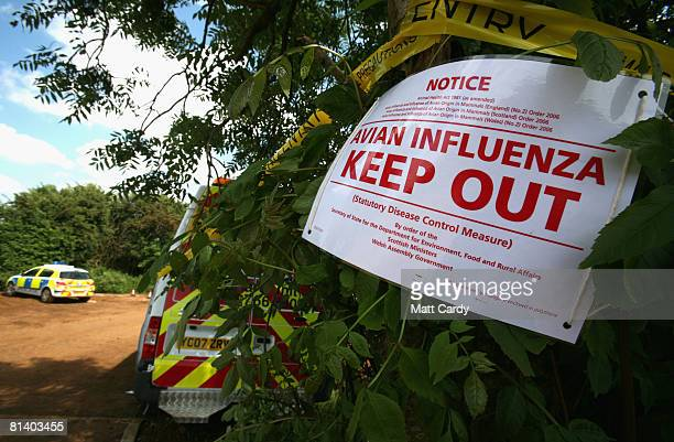 A sign warns of a outbreak of the H7 strain of bird flu at Eastwood Farm near Banbury on June 4 2008 in Oxfordshire England The strain of avian flu...