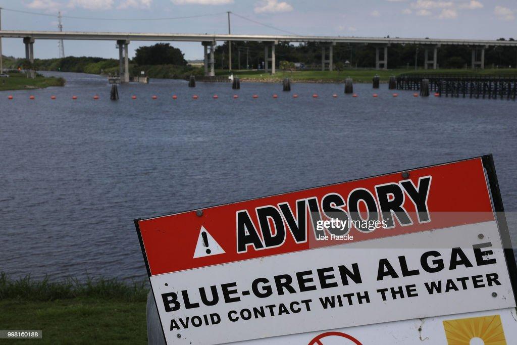 Overflow Of Lake Okeechobee Drained Into Reservoir In Effort Of Keeping Harmful Lake Water From Nearby Estuaries : News Photo
