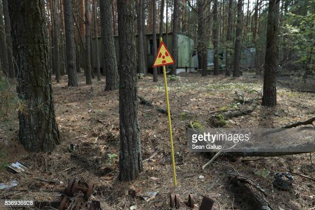 A sign warns of radiation contamination in a forest in the abandoned city of Pripyat near the Chernobyl nuclear power plant on August 18 2017 in...