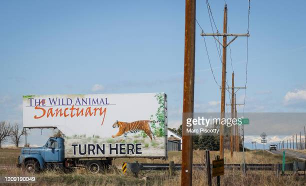 Signage for the Wild Animal Sanctuary where 39 tigers rescued from Joe Exotic's GW Exotic Animal Park currently reside on April 5 2020 in Keenesburg...
