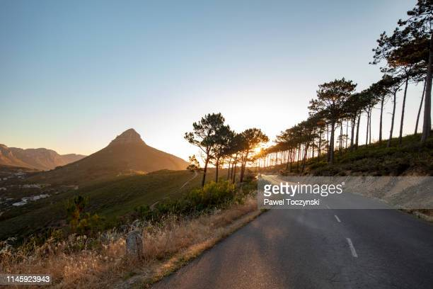 signal hill - cape town stock pictures, royalty-free photos & images