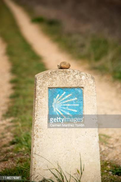 signaling monolith of the camino de santiago, palencia. spain. - cammino di santiago di compostella foto e immagini stock