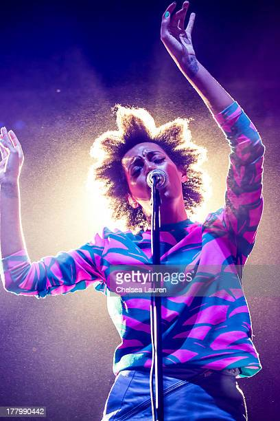 Signer Solange Knowles performs at the 10th annual FYF music festival at Los Angeles Historical Park on August 25 2013 in Los Angeles California