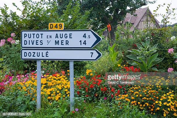 Signpost and colourful flowers in domestic garden