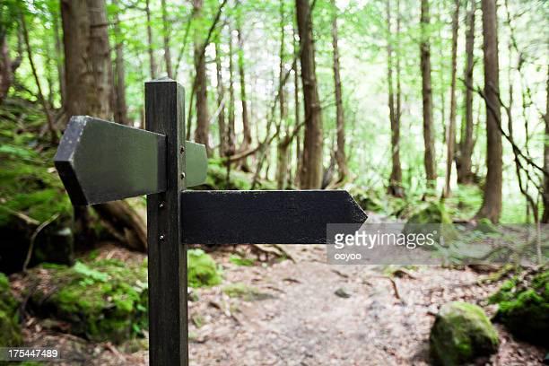 Wegweiser in Wald