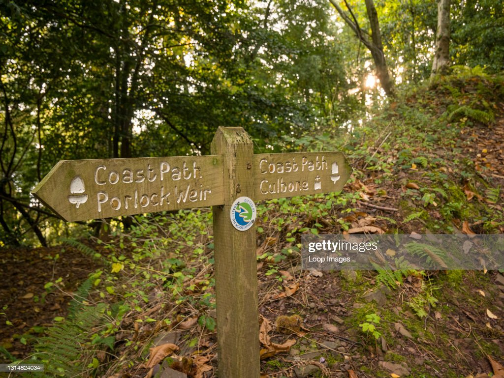 A signpost on the Culbone to Porlock Weir section of the South West Coast Path at Yearnor Wood in the Exmoor National Park : News Photo
