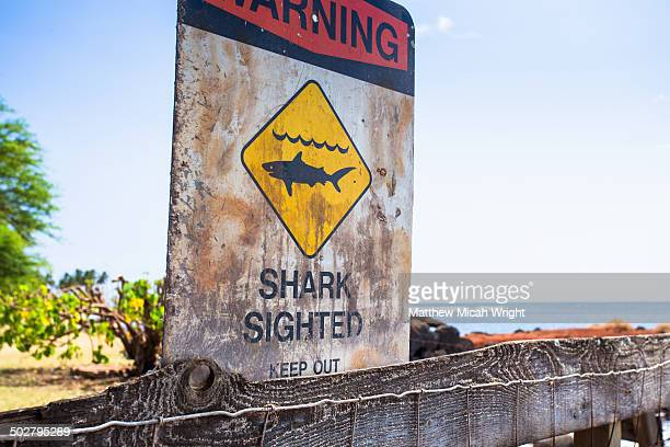 signs warn about shark sightings - warning sign stock pictures, royalty-free photos & images