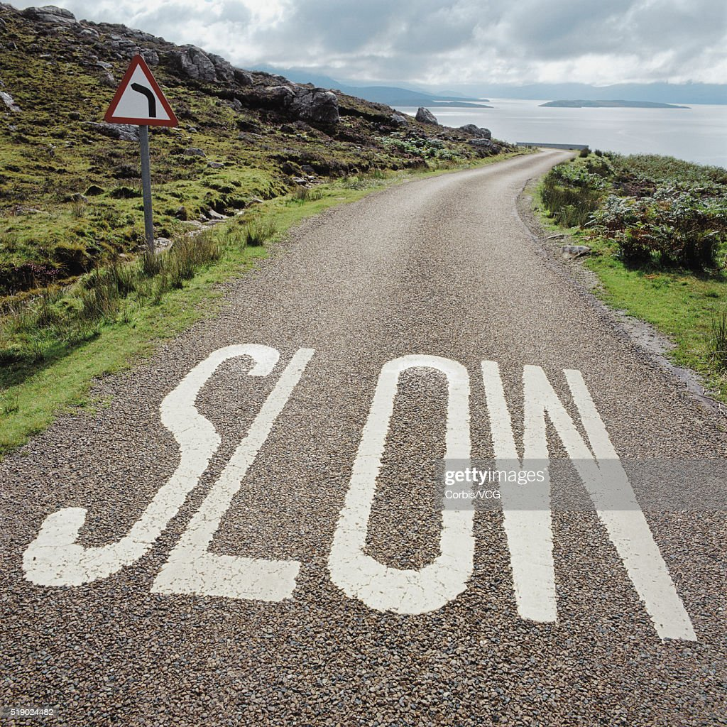 Signs Warning of Approaching Curve : Stock Photo