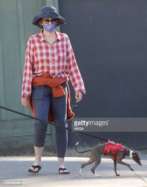 Sigourney Weaver is seen walking her dog on January 14, 2021 in Los Angeles, California.