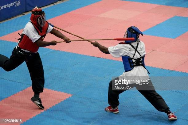 30 Top Indian Martial Arts Pictures, Photos and Images