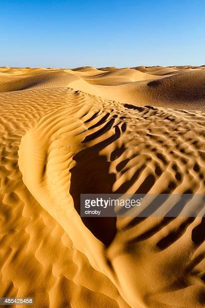silencio del desierto crea nuevas formas y líneas - great sandy desert fotografías e imágenes de stock