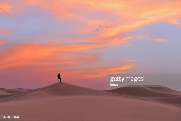 silhouette and dunes at sunset - sahara stock pictures, royalty-free photos & images