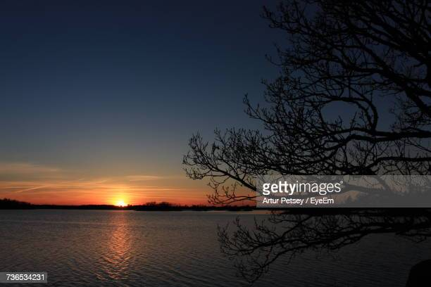 silhouette bare tree by lake against sky during sunset - artur petsey foto e immagini stock